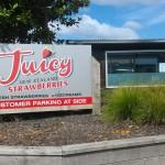 地元民が集うストロベリーアイス屋さん。Juicy NZ Strawberriesにいってきました。