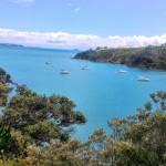 waiheke island で三日間(計12時間)ハイキングしてきました。