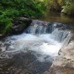 ロトルアから25分!無料で楽しめる天然温泉kerosene creekがおすすめすぎる件