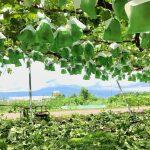 長野農業バイト